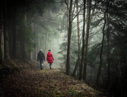 """""""Kaos in cammino"""", tornano le passeggiate organizzate dal centro diurno di salute mentale"""